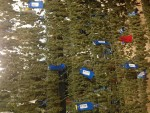 RFID tags on drying marijuana flowers