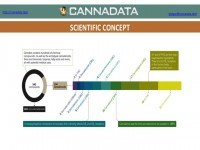 A flowchart breaking down the chemical composition of cannabis