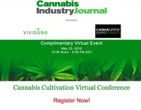 Cannabis Micropropagation, Cost Analysis and Viruses