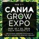 canna grow