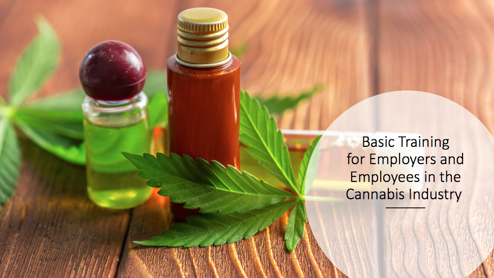 Basic Training for Employers and Employees in the Cannabis Industry