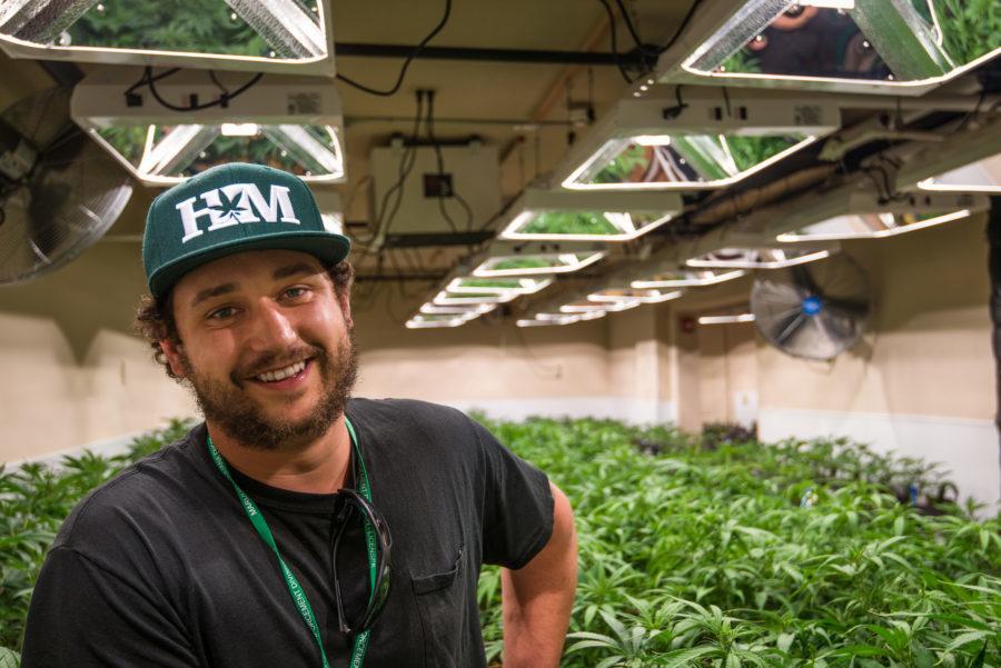 Anthony Franciosi, Honest Marijuana
